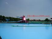 2014.07.05宜蘭國際童玩節~芯怡小棧:2014童玩節242.JPG