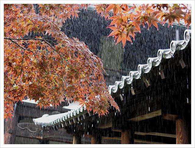 IMG_6969.JPG - 2017-06-21 東福寺