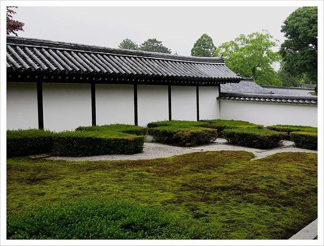 IMG_7085.JPG - 2017-06-21 東福寺