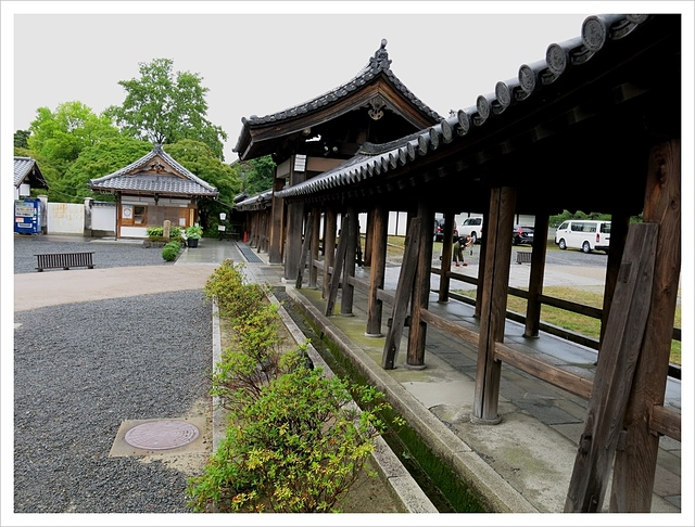 IMG_7102.JPG - 2017-06-21 東福寺