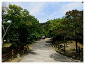 2017-06-17 圓山公園-八坂神社-祇園:IMG_6129.JPG