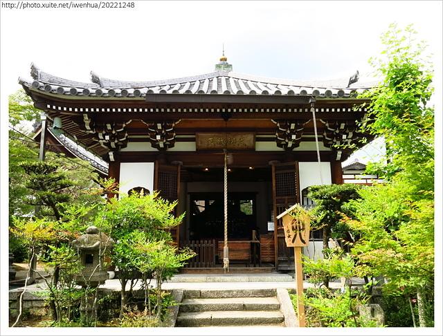 IMG_6342.JPG - 2017-06-18 嵐山-天龍寺-竹林