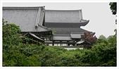 2017-06-21 東福寺:IMG_7024.JPG