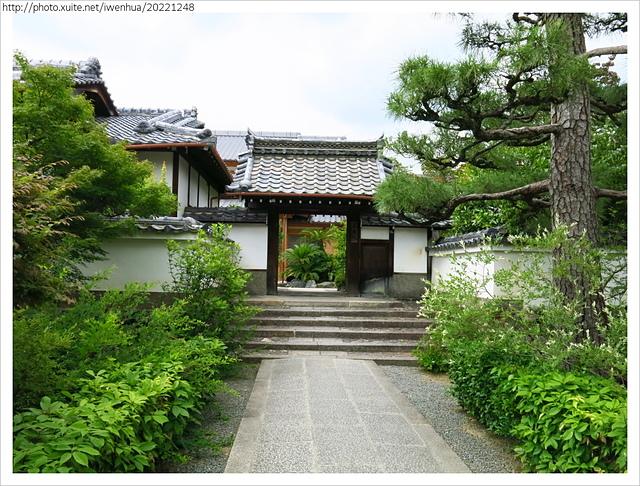 IMG_6350.JPG - 2017-06-18 嵐山-天龍寺-竹林