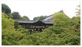 2017-06-21 東福寺:IMAG0202.jpg