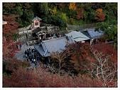 2016-11-25 清水寺:IMG_3504.JPG