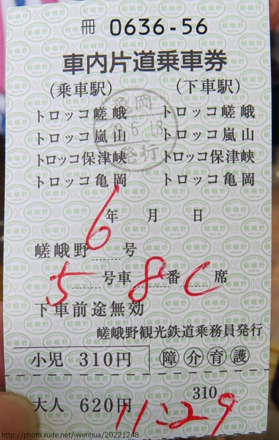IMG_6211.JPG - 2017-06-18 嵐山-天龍寺-竹林