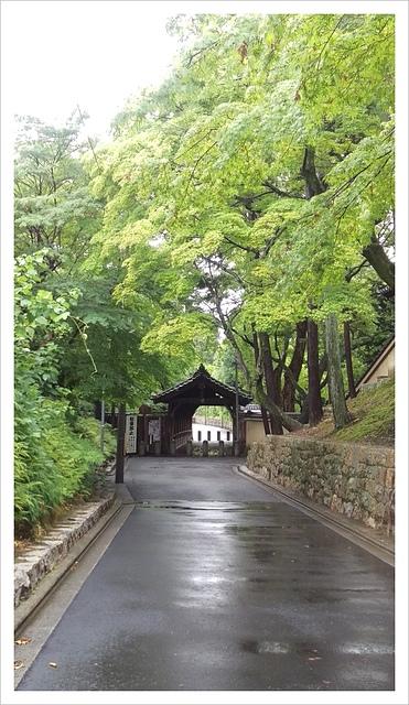IMAG0225.jpg - 2017-06-21 東福寺