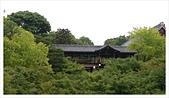 2017-06-21 東福寺:IMAG0228.jpg