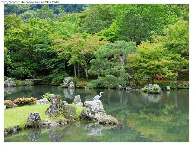IMG_6295.JPG - 2017-06-18 嵐山-天龍寺-竹林