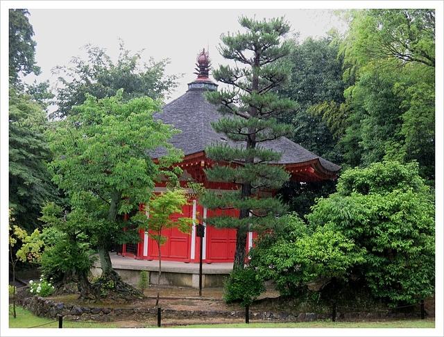 IMG_7026.JPG - 2017-06-21 東福寺
