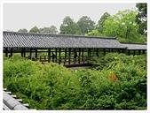 2017-06-21 東福寺:IMG_7073.JPG