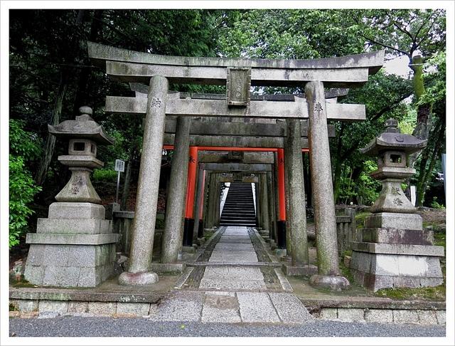 IMG_7108.JPG - 2017-06-21 東福寺