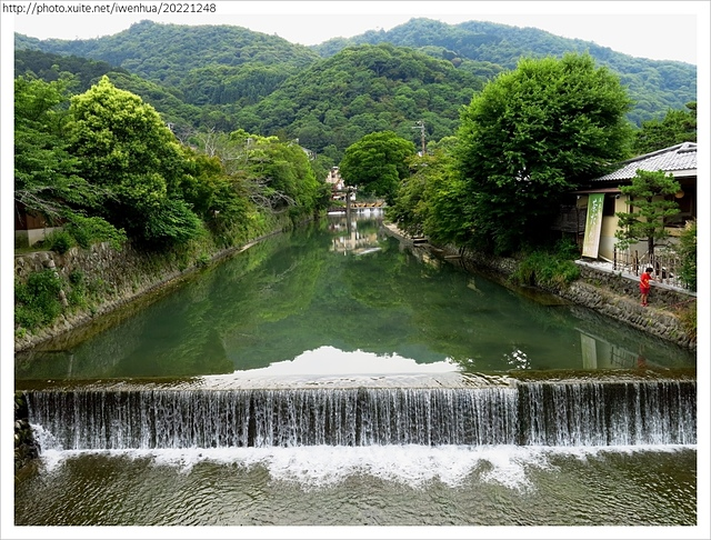 IMG_6384.JPG - 2017-06-18 嵐山-天龍寺-竹林