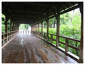 2017-06-21 東福寺:IMG_6833.JPG
