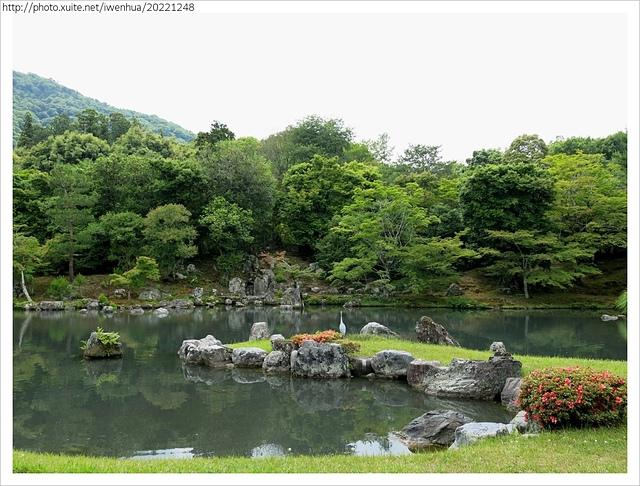 IMG_6292.JPG - 2017-06-18 嵐山-天龍寺-竹林