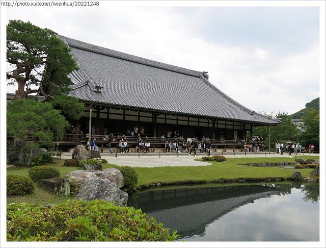 IMG_6305.JPG - 2017-06-18 嵐山-天龍寺-竹林