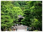 2017-06-17 圓山公園-八坂神社-祇園:IMG_6126.JPG