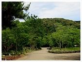 2017-06-17 圓山公園-八坂神社-祇園:IMG_6134.JPG