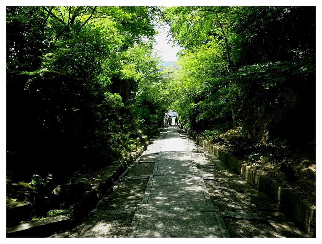 2017-06-17 高台寺:IMG_6106.JPG