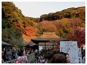 2016-11-25 清水寺:IMG_3507.JPG