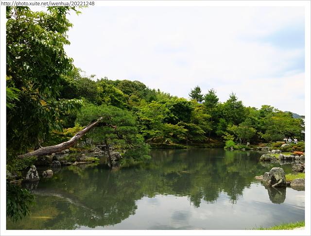 IMG_6280.JPG - 2017-06-18 嵐山-天龍寺-竹林