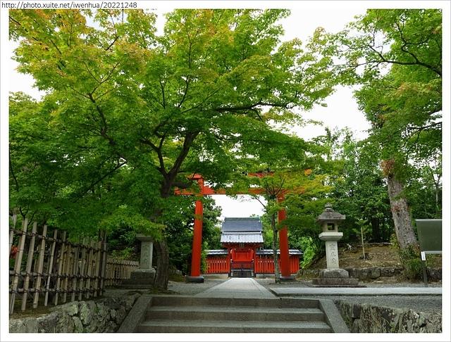 IMG_6325.JPG - 2017-06-18 嵐山-天龍寺-竹林