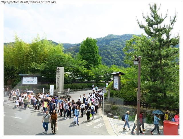 IMG_6359.JPG - 2017-06-18 嵐山-天龍寺-竹林