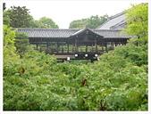 2017-06-21 東福寺:IMG_6819.JPG