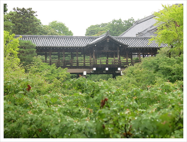 IMG_6819.JPG - 2017-06-21 東福寺