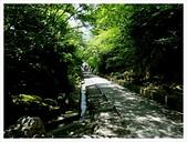 2017-06-17 高台寺:IMG_6105.JPG