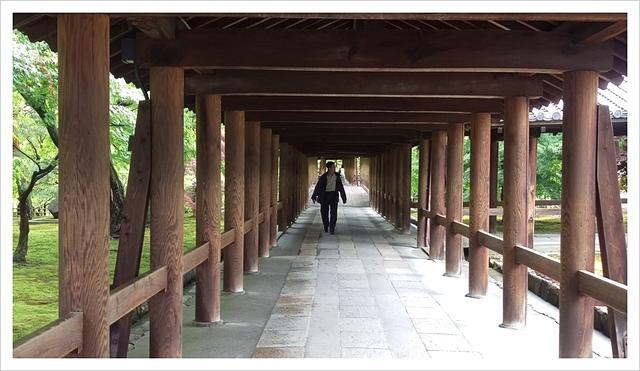 IMAG0206.jpg - 2017-06-21 東福寺