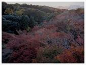 2016-11-25 清水寺:IMG_3501.JPG