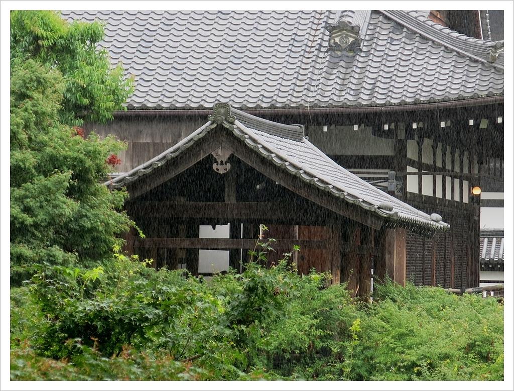 2017-06-21 東福寺:IMG_6980.JPG