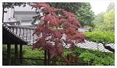 2017-06-21 東福寺:IMAG0224.jpg