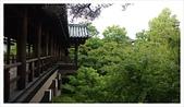 2017-06-21 東福寺:IMAG0213.jpg
