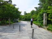 2017-06-20 宇治-平等院-宇治神宮-興聖寺:IMG_6600.JPG