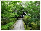 2017-06-24 嵐山清涼寺-大覺寺-常寂光寺:IMG_7546.JPG