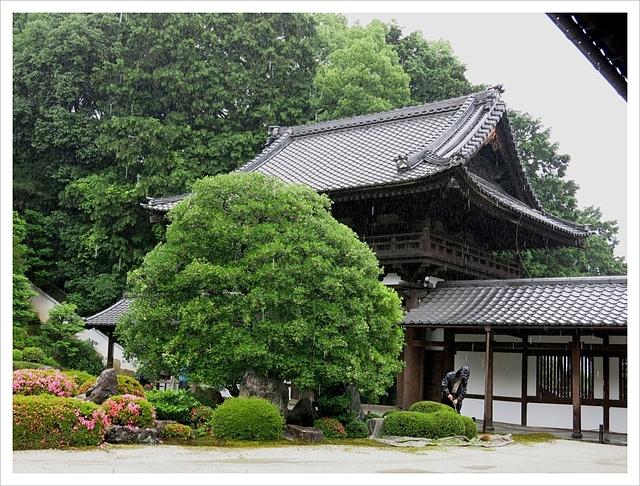IMG_7011.JPG - 2017-06-21 東福寺