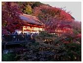 2016-11-25 清水寺:IMG_3508.JPG