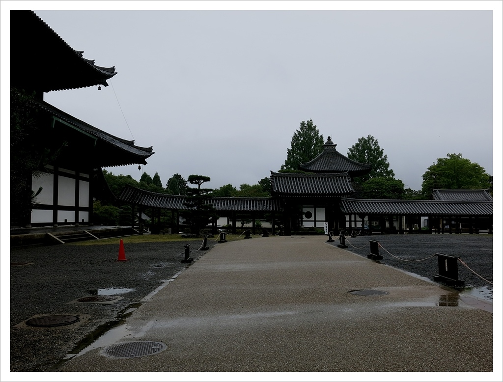 2017-06-21 東福寺:IMG_7087.JPG