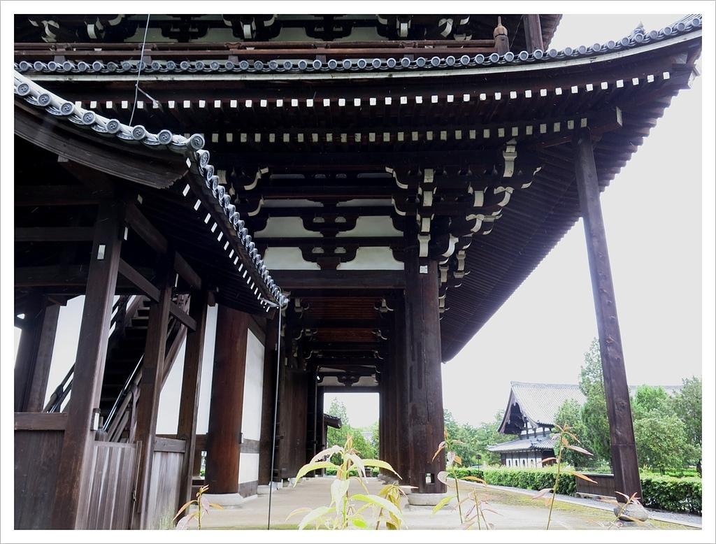 2017-06-21 東福寺:IMG_7111.JPG
