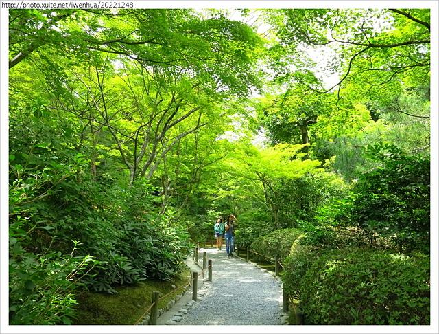 IMG_6278.JPG - 2017-06-18 嵐山-天龍寺-竹林