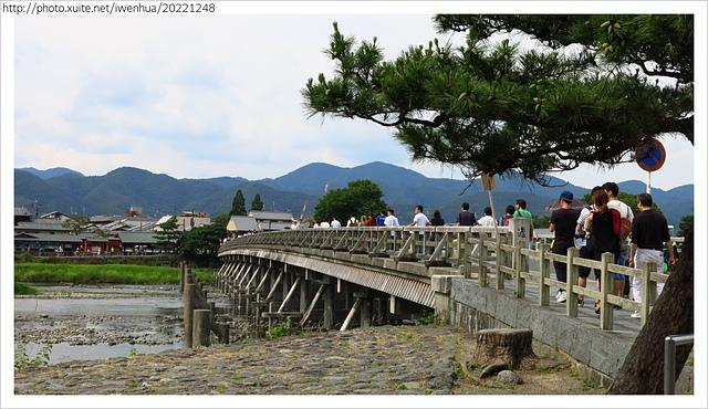 IMG_6421.JPG - 2017-06-18 嵐山-天龍寺-竹林