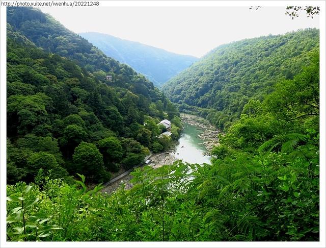 IMG_6449.JPG - 2017-06-18 嵐山-天龍寺-竹林