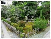 2017-06-24 嵐山清涼寺-大覺寺-常寂光寺:IMG_7545.JPG