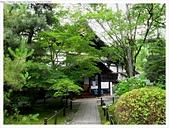 2017-06-24 嵐山清涼寺-大覺寺-常寂光寺:IMG_7547.JPG