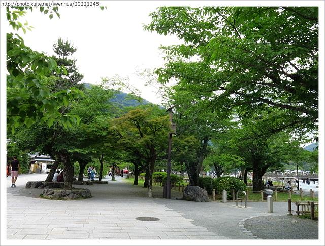 IMG_6396.JPG - 2017-06-18 嵐山-天龍寺-竹林