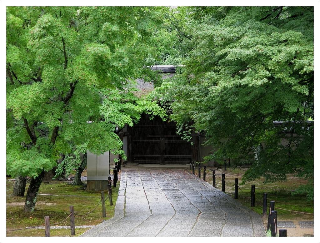 2017-06-21 東福寺:IMG_6919.JPG