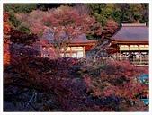 2016-11-25 清水寺:IMG_3505.JPG